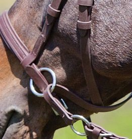Dr. Cook Dr. Cook Bitless Bridle - Beta