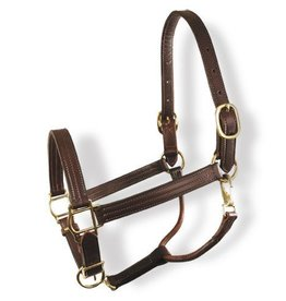 "Colonial 1"" Halter w/Three Row Stitching & Brass Hardware"