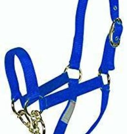 Lamprey Cow Control Halter, Royal Blue