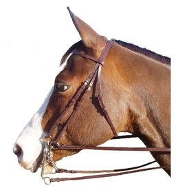 Intrepid Legacy Weymouth Bridle - Full  Havana