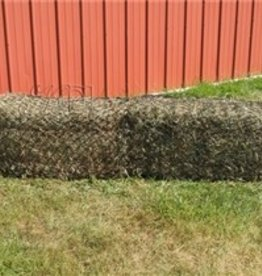 Hay CHIX Hay Chix - W134 West Coast Bale Net Black West Coast