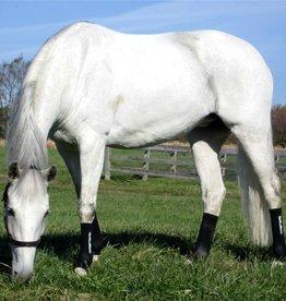 Equi Flexsleeve Equi Flexsleeve Horse Size Black