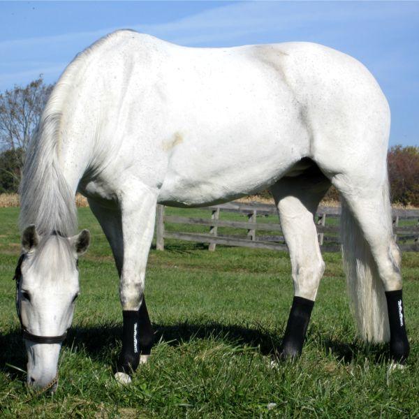 Equi Flexsleeve Horse Size Black