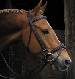 Smith Worthington Bridle - Signature Raised Padded, Cob Havana