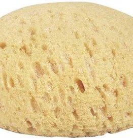 GT Reid Round Synthetic Tack Sponge