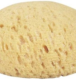 Round Synthetic Tack Sponge