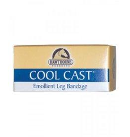 Cool Cast  4x10