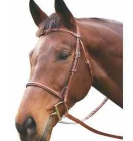 HDR HDR Raised Leather Bridle with Laced Reins