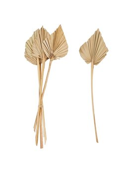 Creative Co-op Dried Natural Palm Bunch - Spear Cut