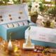 Tea forte Wellbeing Petite Presentation Box