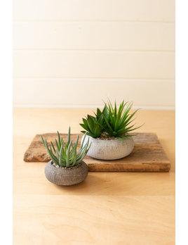 Kalalou Set of Two Succulents in Concrete Pots