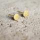Wild Juniper Gold Stud Earrings - Hypoallergenic Textured Circles