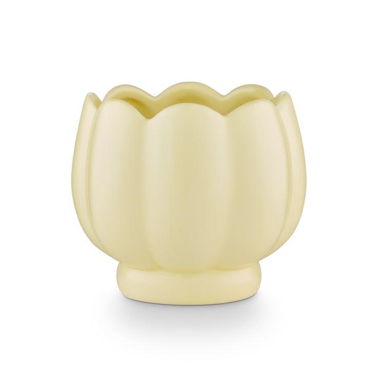 Illume Petal Ceramic Candle