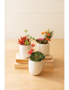 Kalalou Artificial Succulent Plants in White Pot