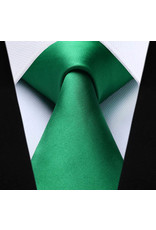Kelly Green Tie