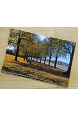 Huntington, WV Postcard Set