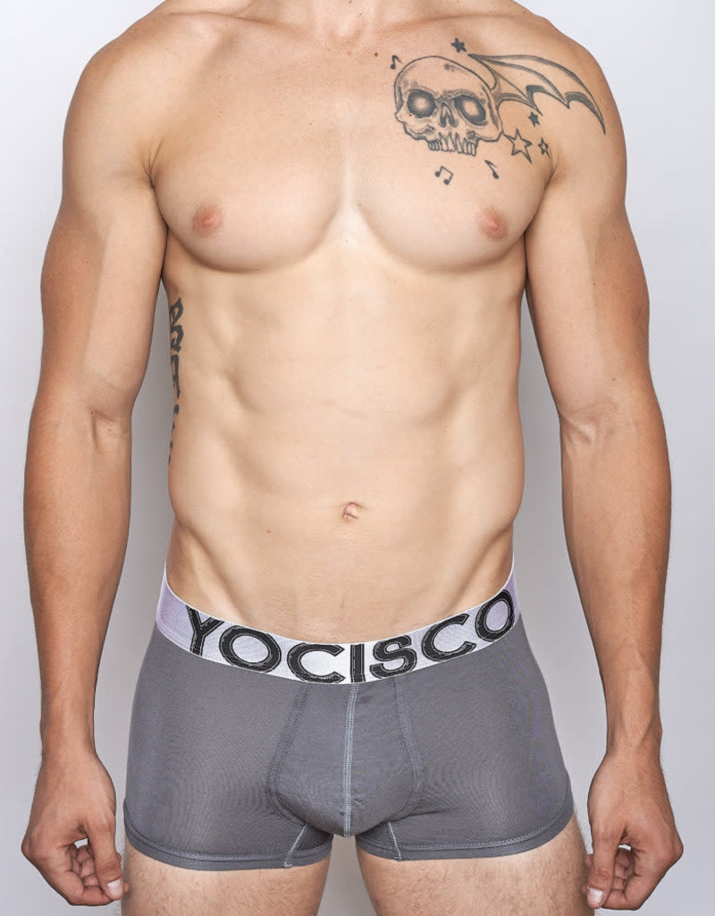 YoCisco Essentials Iso Brief