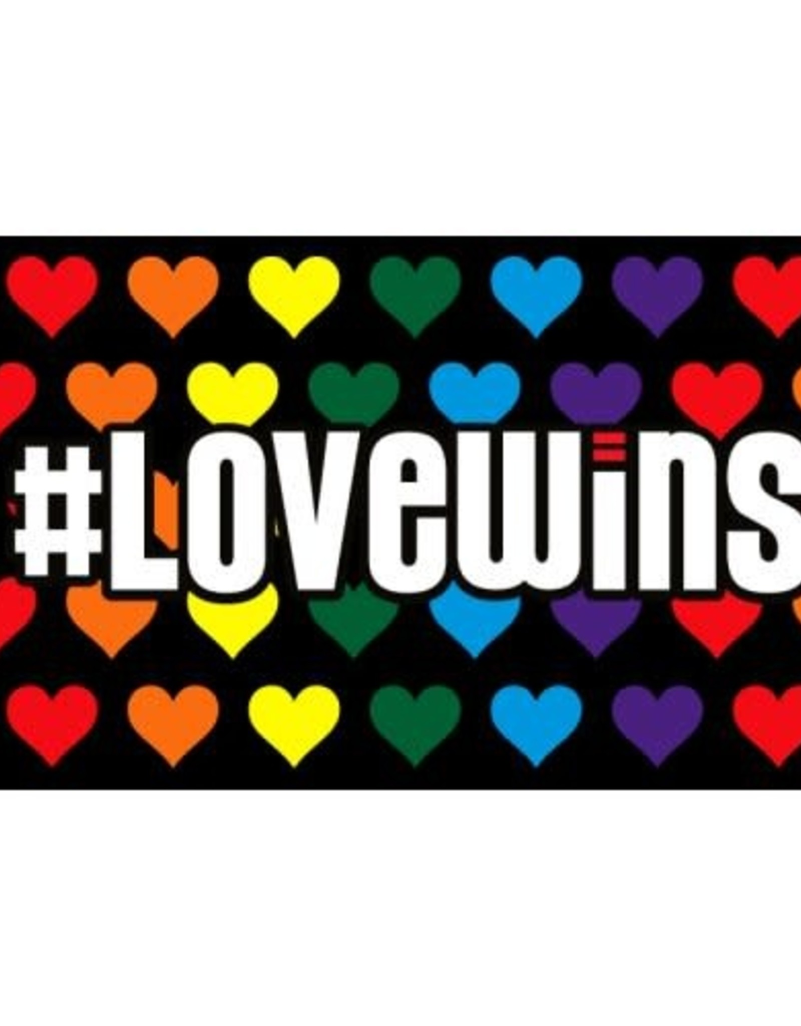 Love Wins Polyester flag 3'5'