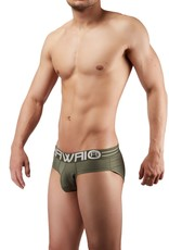 Hawai Briefs