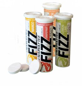 Hammer Nutrition Hammer Endurolytes, Fizz