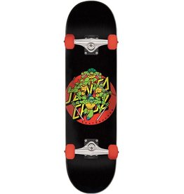 Santa Cruz Santa Cruz- TMNT- Turtle Power-  8.0- Complete