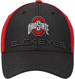 TOP OF THE WORLD Ohio State Buckeyes Reach 1Fit Cap