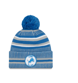 NEW ERA Detriot Lions New Era NFL 2019 Official Sideline Sport Knit Hat