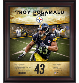 "MOUNTED MEMORIES Troy Polamalu Pittsburgh Steelers Framed 15"" x 17"" Hall of Fame Career Profile"