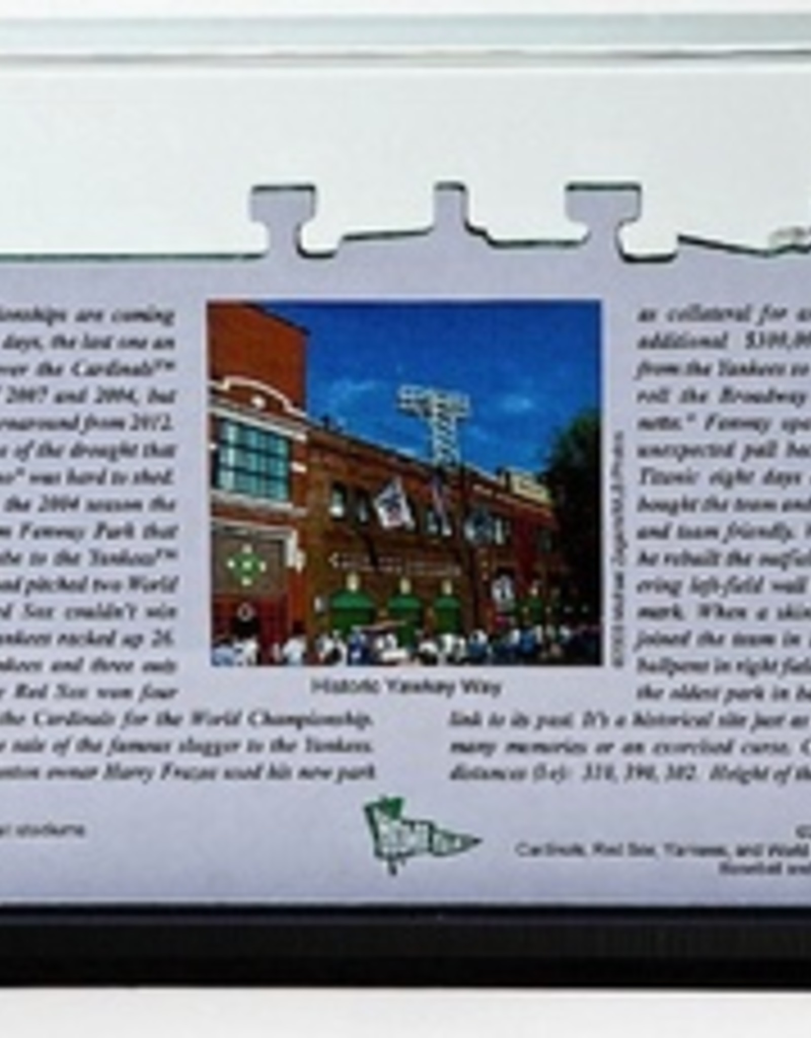 HOMEFIELDS Boston Red Sox 19IN Lighted Replica Fenway Park