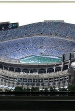 HOMEFIELDS Carolina Panthers 19IN Lighted Replica Bank of America Stadium