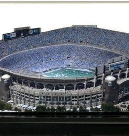 HOMEFIELDS Carolina Panthers 9in Lighted Replica Bank of America Stadium