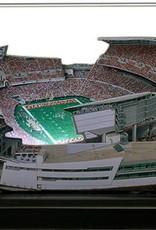 HOMEFIELDS Cincinnati Bengals 19IN Lighted Replica Paul Brown Stadium