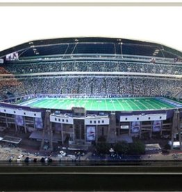 HOMEFIELDS Dallas Cowboys 9in Lighted Replica Texas Stadium (1971-2008)