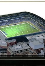HOMEFIELDS Detriot Lions 9in Lighted Replica Ford Field