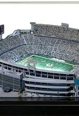 HOMEFIELDS Jacksonville Jaguars 9in Lighted Replica EverBank Field
