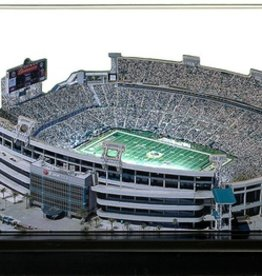HOMEFIELDS Jacksonville Jaguars 13IN Lighted Replica EverBank Field