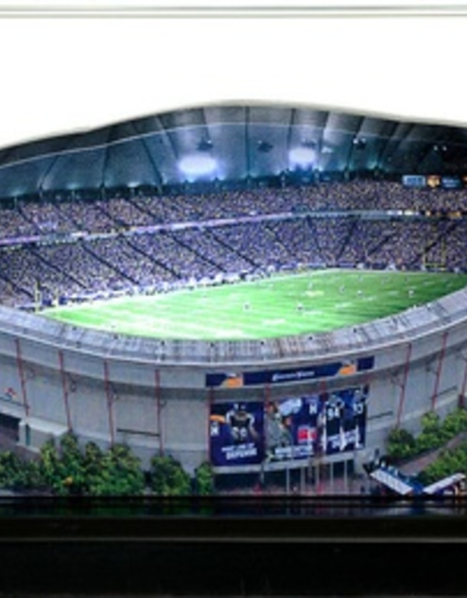 HOMEFIELDS Minnesota Vikings 19IN Lighted Replica Metrodome (1982-2013)