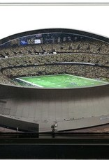 HOMEFIELDS New Orleans Saints 9in Lighted Replica Mercedes Benz Superdome