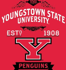 "NORTHWEST Youngstown State Penguins 50""x60"" Combine Raschel Plush Throw"