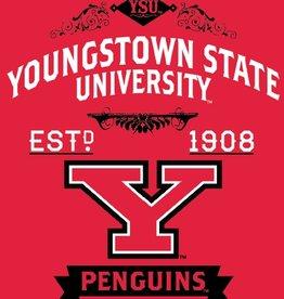 "NORTHWEST Youngstown State Penguins 50""x60"" Combine Raschel Plush Throw"