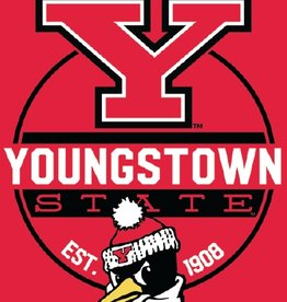 NORTHWEST Youngstown State Penguins 60in x 80in Silk Touch Throw Wrap