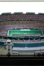 HOMEFIELDS Washington Redskins 13IN Lighted Replica RFK Stadium (1961-1996)