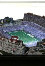 HOMEFIELDS Tennessee Titans 19IN Lighted Replica LP Field