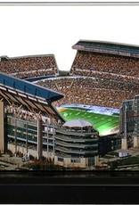 HOMEFIELDS Pittsburgh Steelers 19IN Lighted Replica Heinz Field
