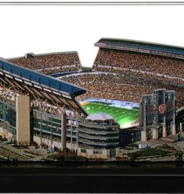 HOMEFIELDS Pittsburgh Steelers 19IN Lighted Replica Heinz Field
