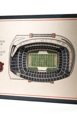 YOU THE FAN Chicago Bears 5-Layer 3D Stadium Wall Art