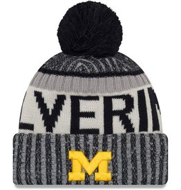 NEW ERA Michigan Wolverines New Era NE17 Sport Knit Hat