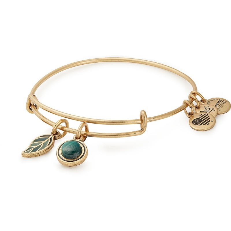 Alex and Ani Grounded EWB, RG