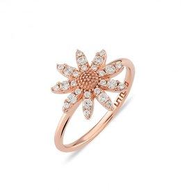 Kurshuni Jewellery Rose Gold Daisy Cz Ring Size 7.5