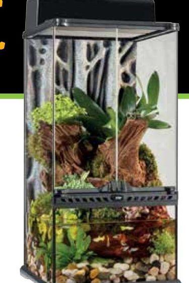 Exoterra Terrarium mini extra haut 12x12x24 po